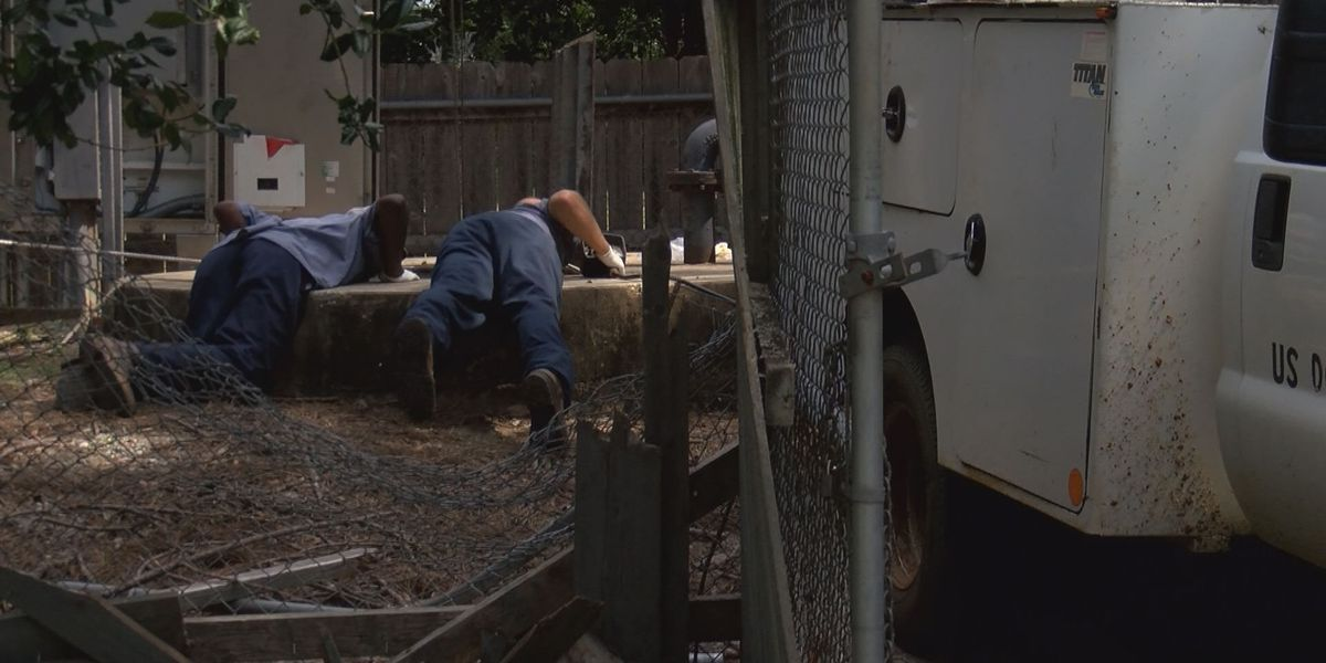 Albany city worker injured after falling into hole
