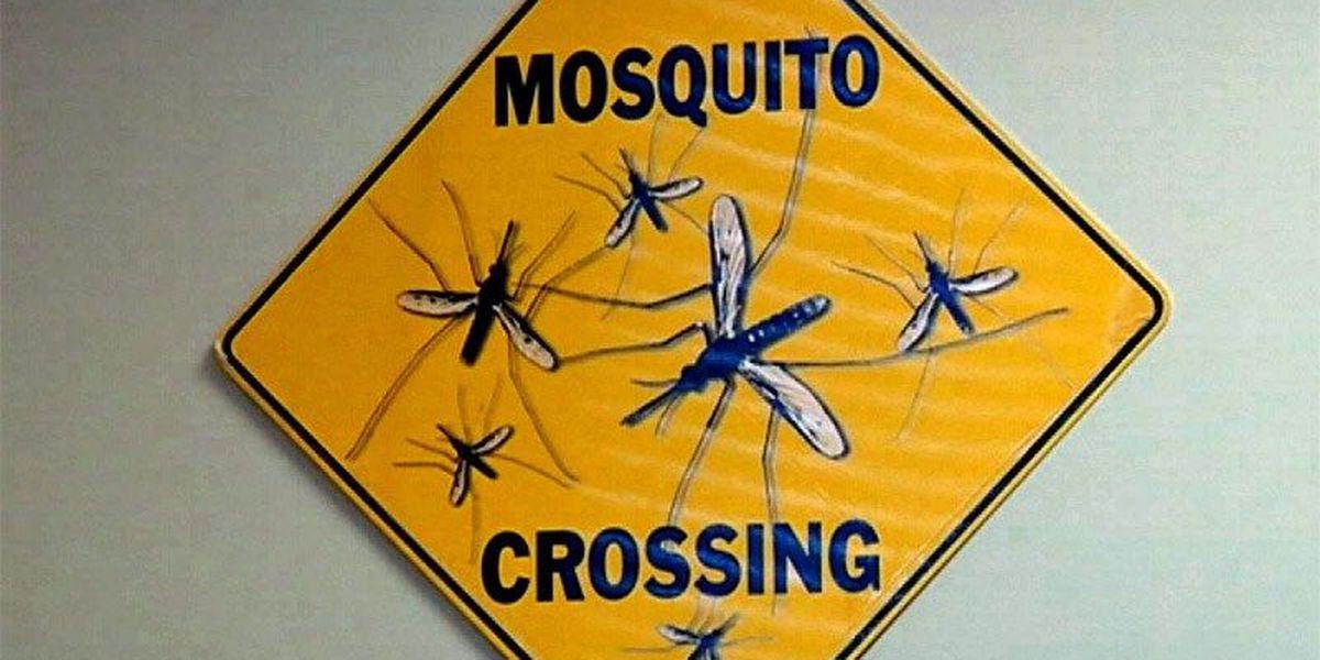 South Georgia health officials prepare for Zika