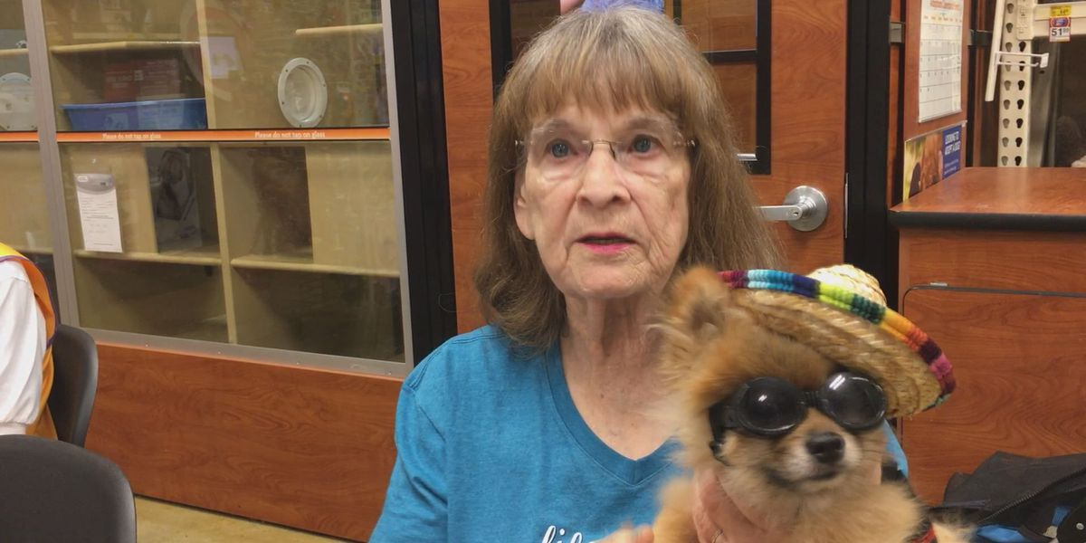 Albany Lions Club hold fundraiser for leader dogs for the blind