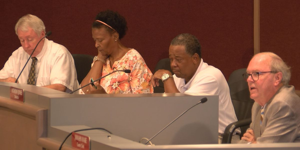 Hospital alliance chief answers questions about proposed Lee hospital