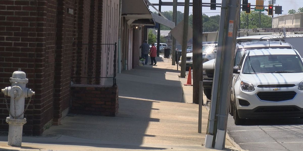 Tifton developer's plans presented to City Council
