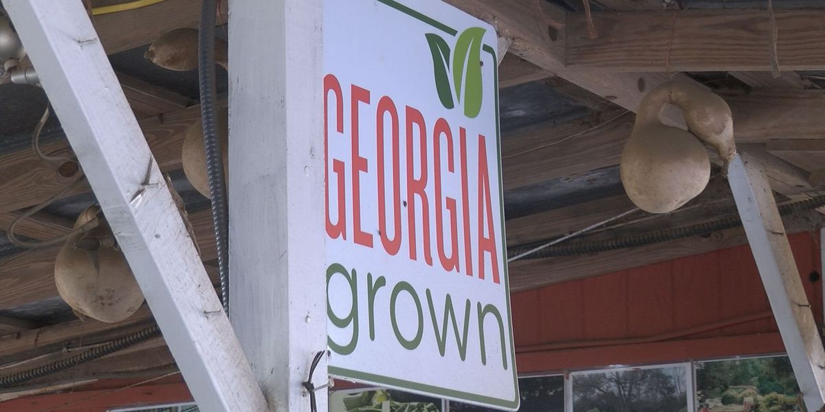 Local farmers offer Georgia grown holiday gifts