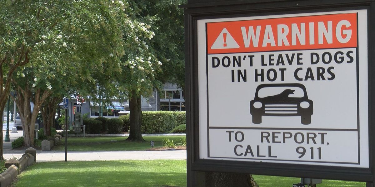 Campaign reminds community not to leave pets in cars