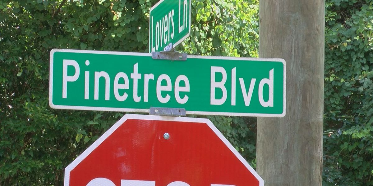 Controversial debate over Pinetree Boulevard continues