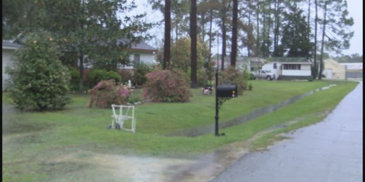 Elderly Colquitt County woman suffers life threatening injuries in dog attack