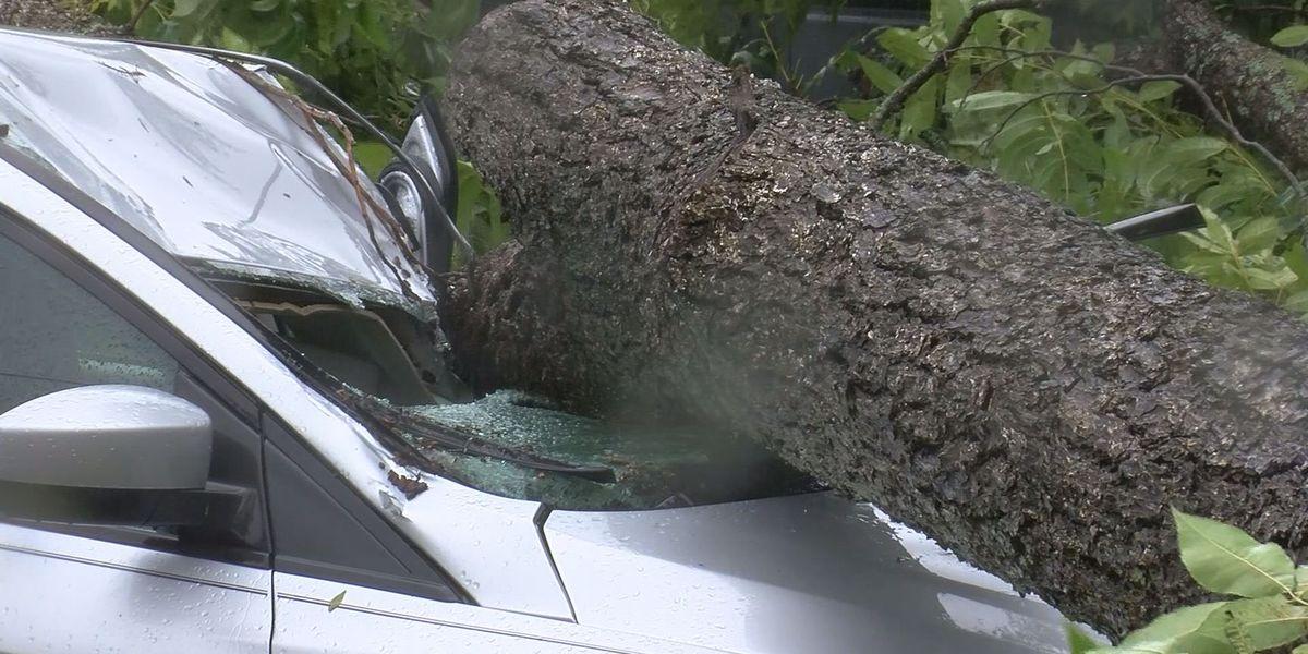 Lowndes Co. urges hurricane season preparedness