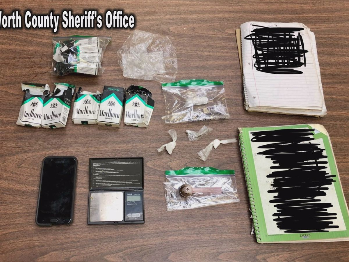 Worth Co. deputies make 2 busts in 1 week: Drugs, fake bills seized