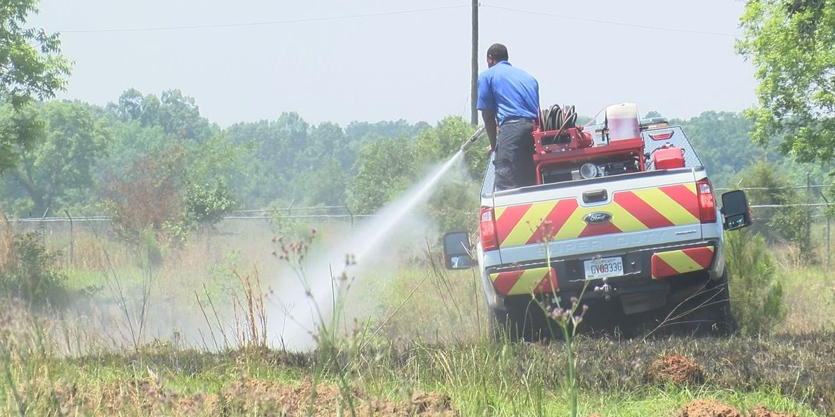 Afternoon grass fire under control