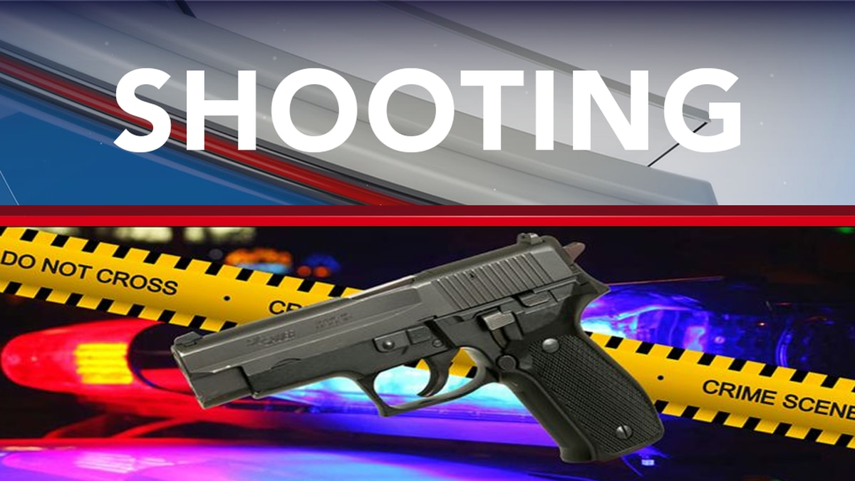 Police: 2 injured in Albany shooting