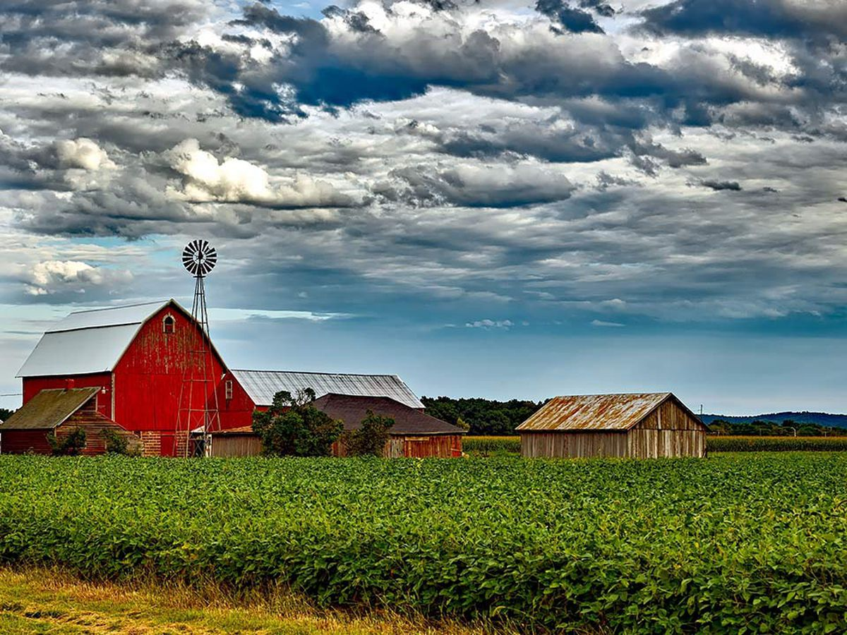 Protect Your Agriculture Business With The Right Insurance