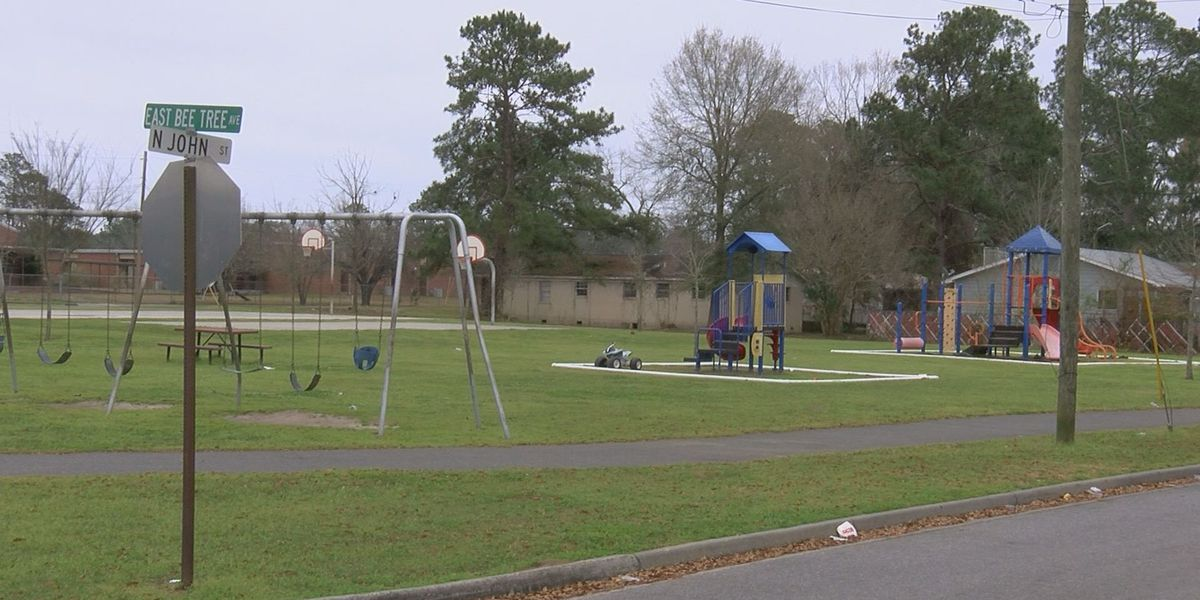Brawl in Berrien Co. park leads to dozens facing charges