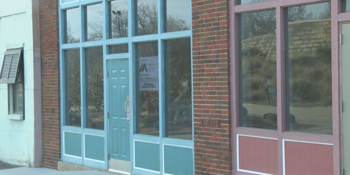Albany officials give green light for 4 new businesses downtown