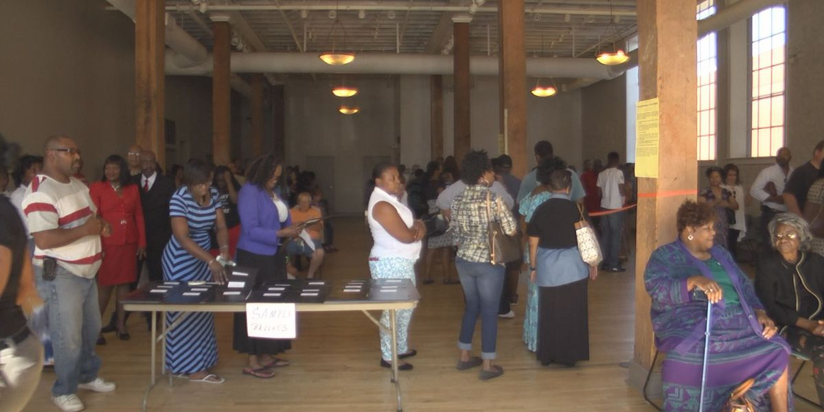 Sunday voting has long wait in Albany
