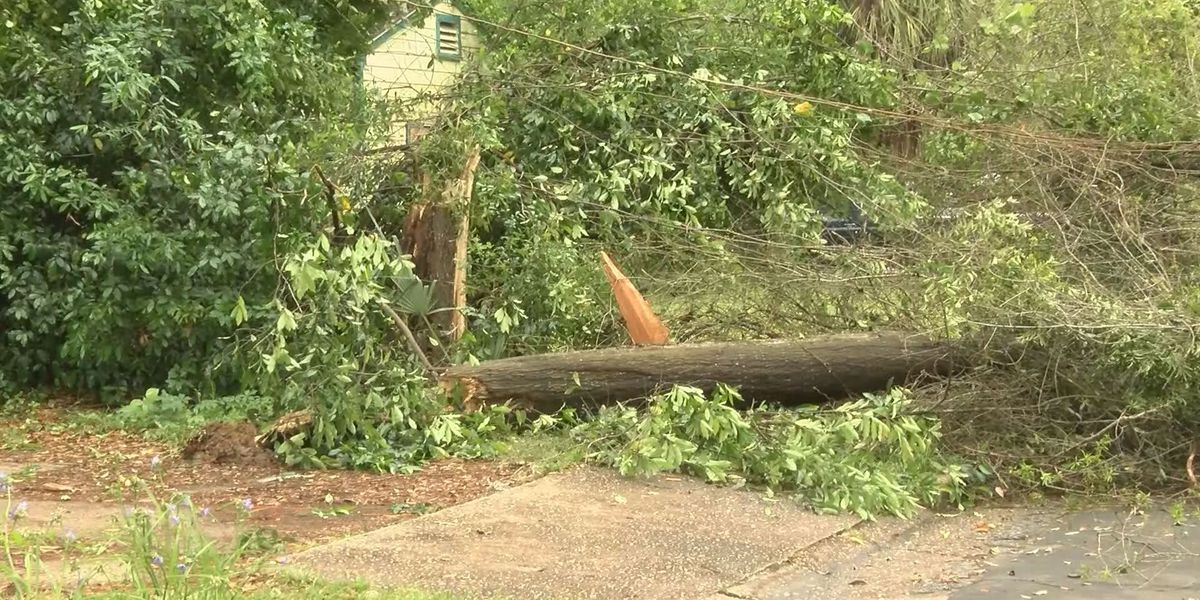 National Weather Service confirms EF-1 tornado in Decatur County