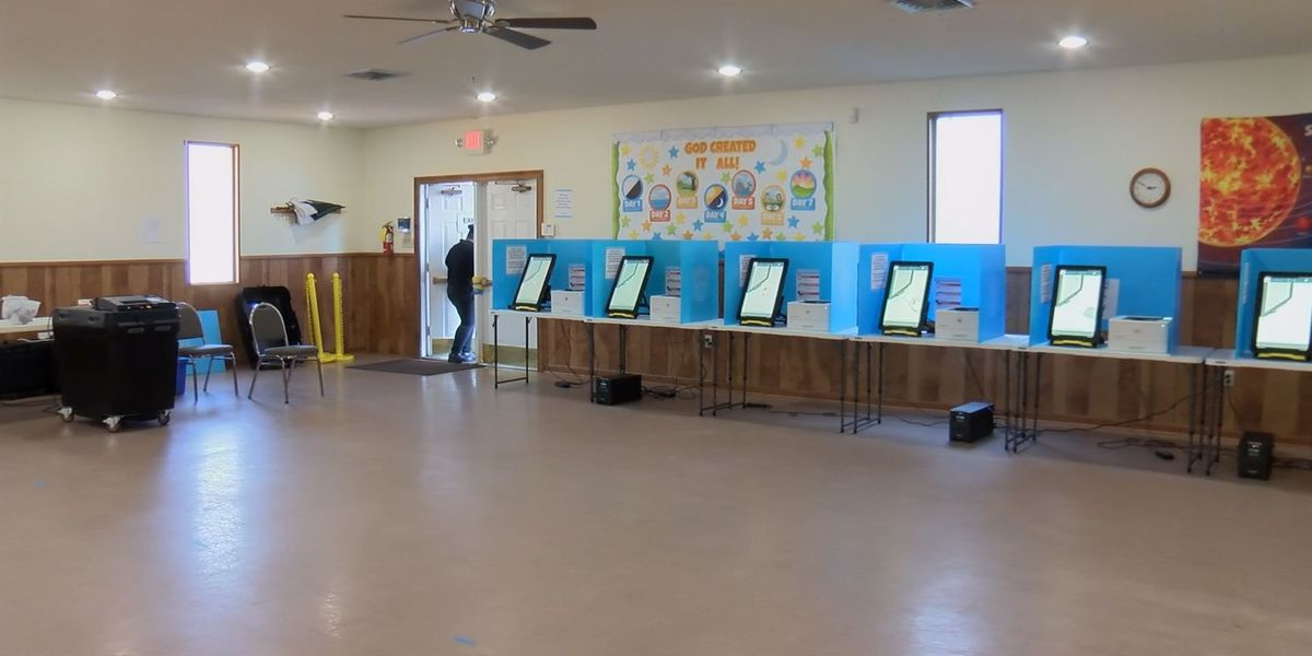 South Georgia voters utilize three different voting methods during runoff election