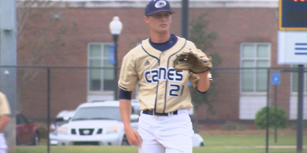 Canes fall to Young Harris in double header