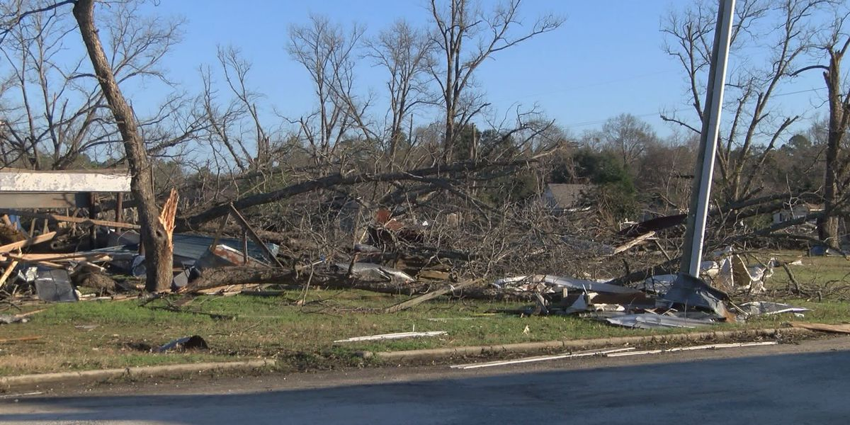 Albany-Dougherty victims voice concerns over Jan. storm recovery