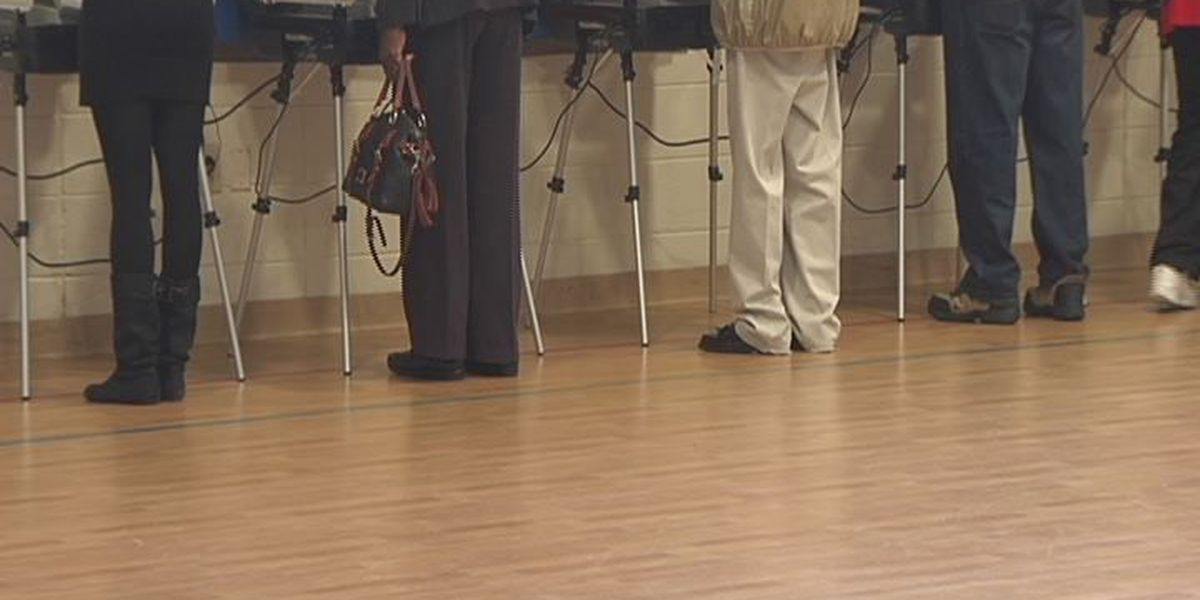 Officials: Dougherty Co. voter turnout could be better