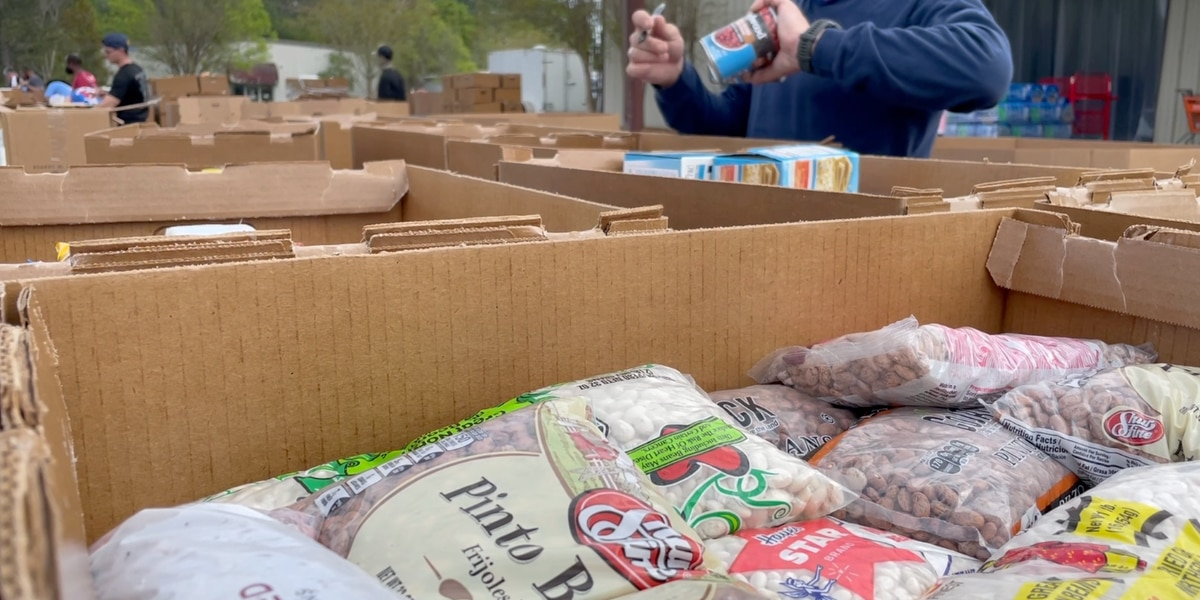 Volunteers gather to help organizations during annual 'Day of Caring'
