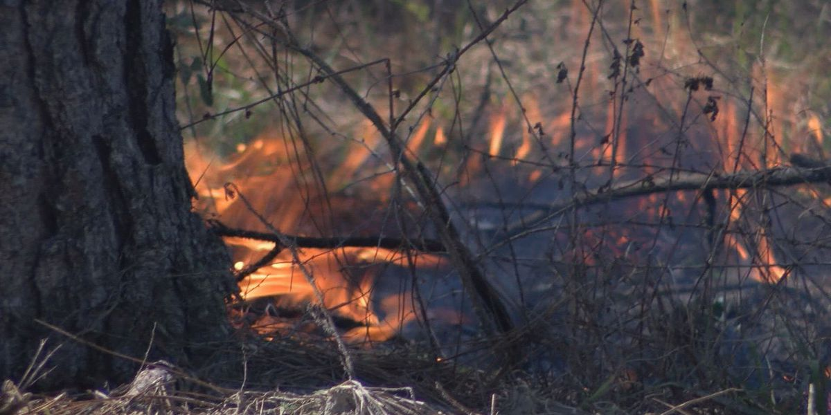 AFD warns residents about brush fires