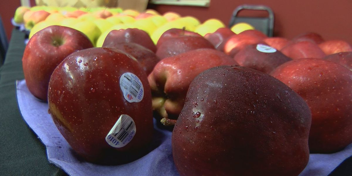 Mobile market helps elderly, low-income families in Albany
