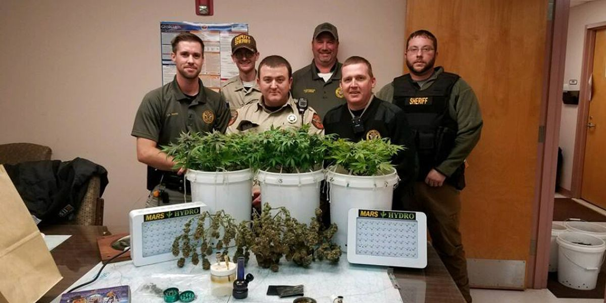 Deputies bust Seminole County marijuana grow operation