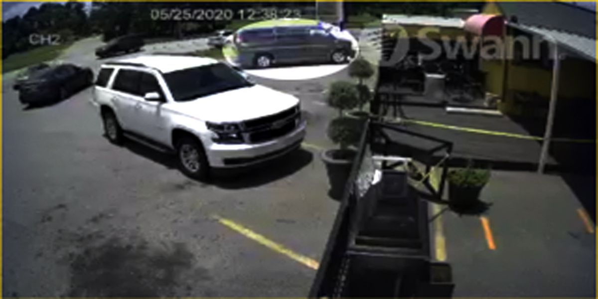 Albany city leader looking for sign thief