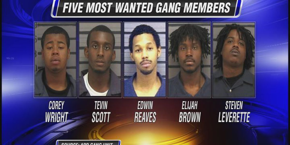 Another 'Most Wanted' gang member is off the street