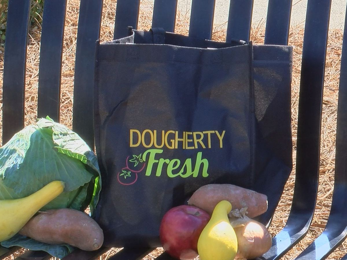 Dougherty Fresh works to make healthy options available at Saturday festival