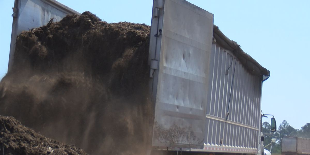 Dougherty Co. landfill continues to turn trash into power
