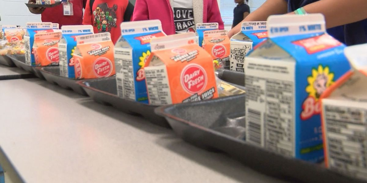 Dougherty Co. School System to offer free meals to kids over the summer