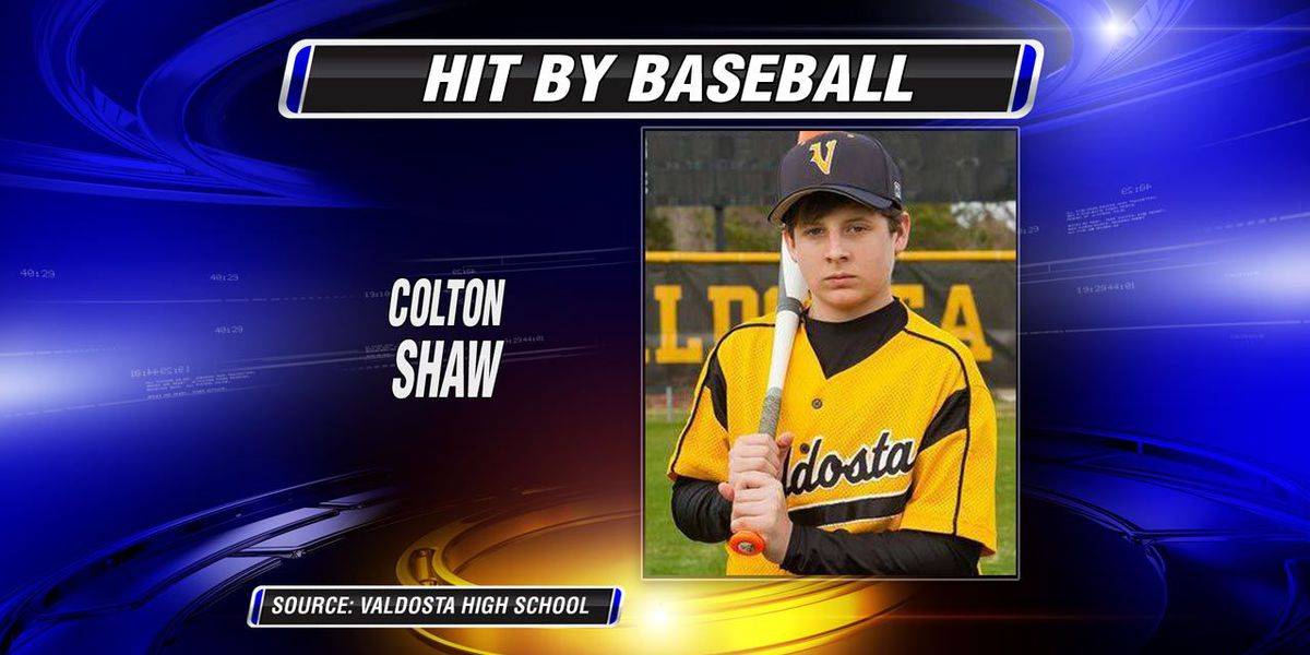 Teen hit by baseball dies