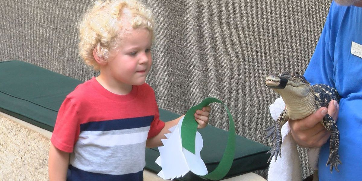 "Kids learn about animals during ""Tadpole Time"""