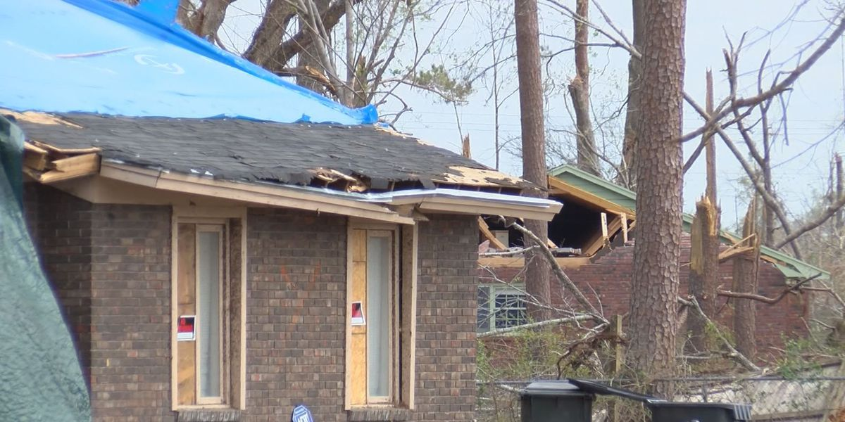 Counseling hotline assists storm victims