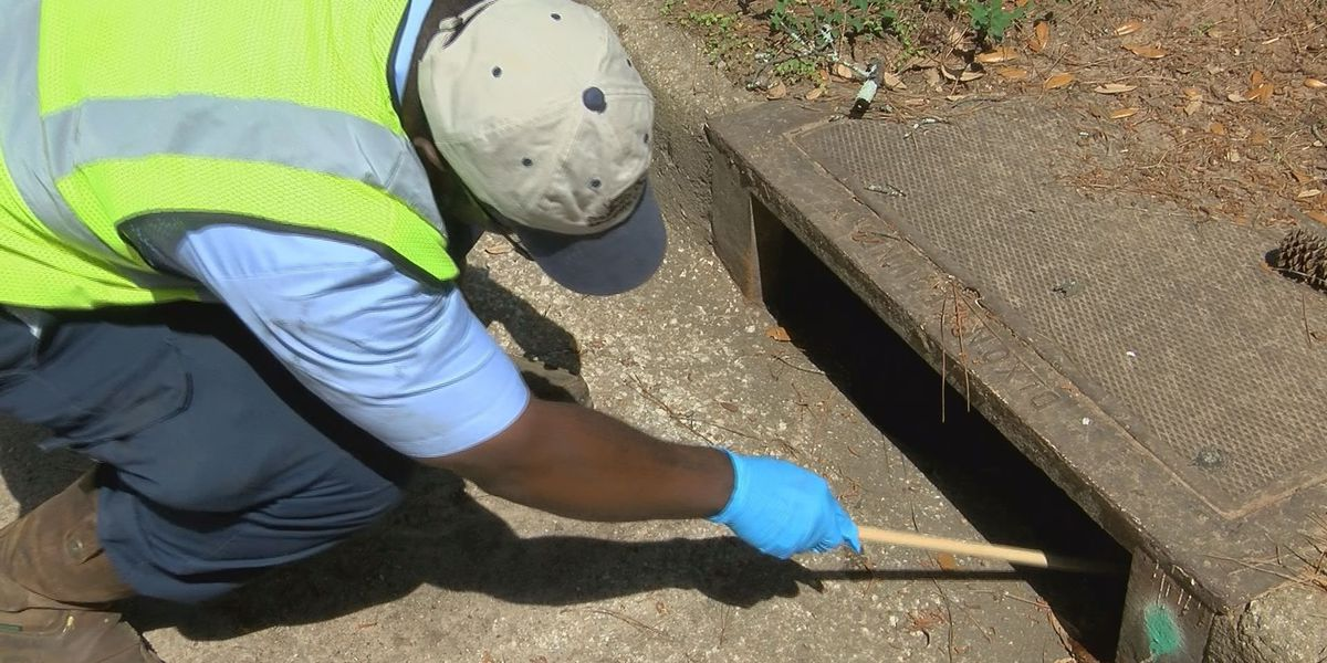 Albany-Dougherty County crews staying ahead of mosquito problems