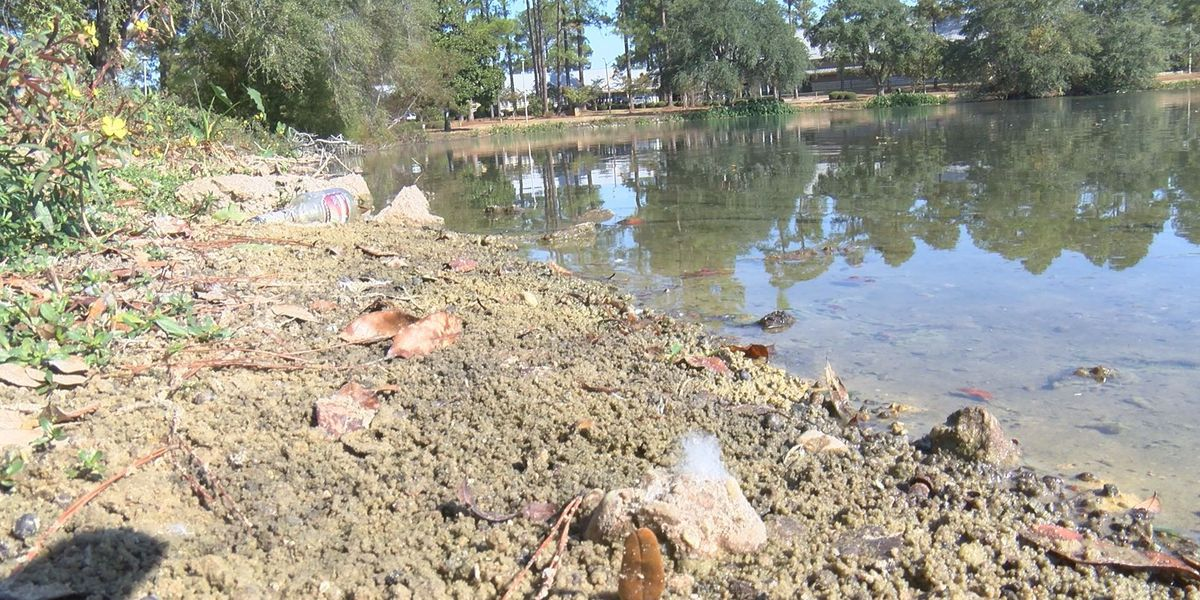 Albany to set drought record