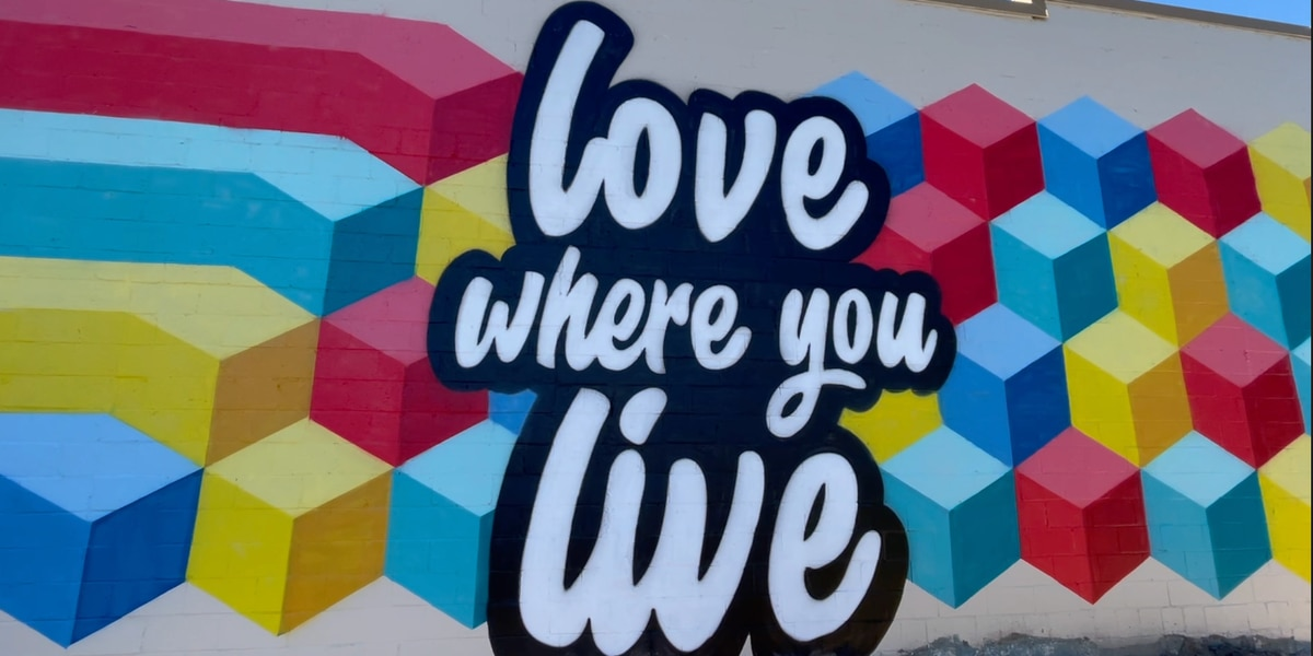 Downtown Valdosta hopes to bring more art to the area with new mural
