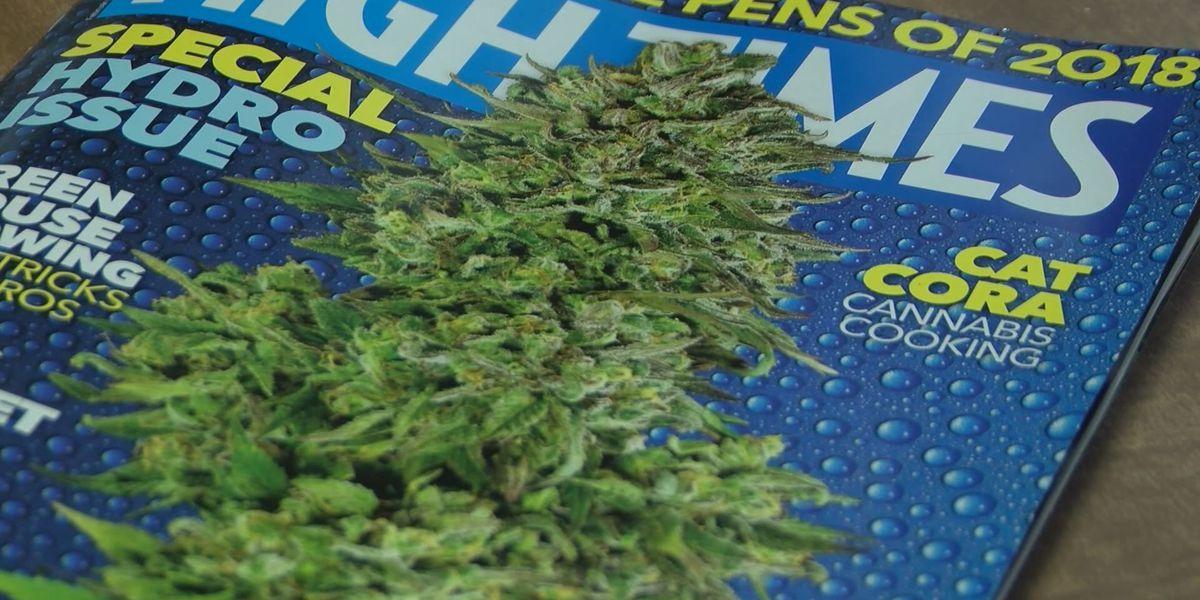 Albany marijuana advocate suggests jury nullification