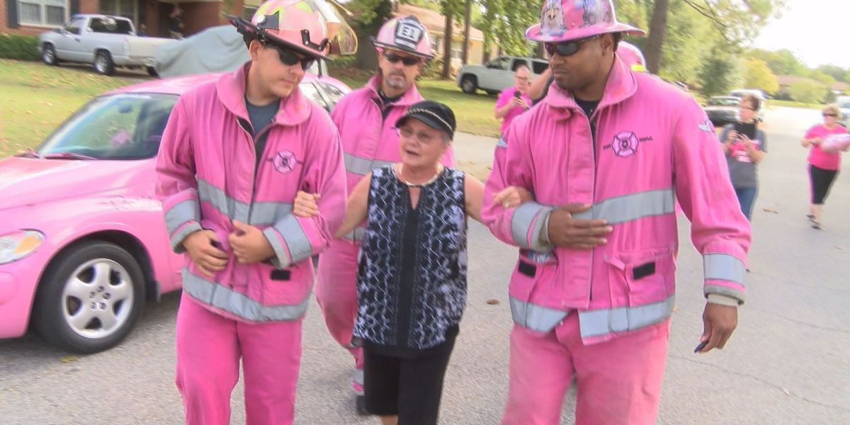 Pink Heals Tour comes to Leesburg