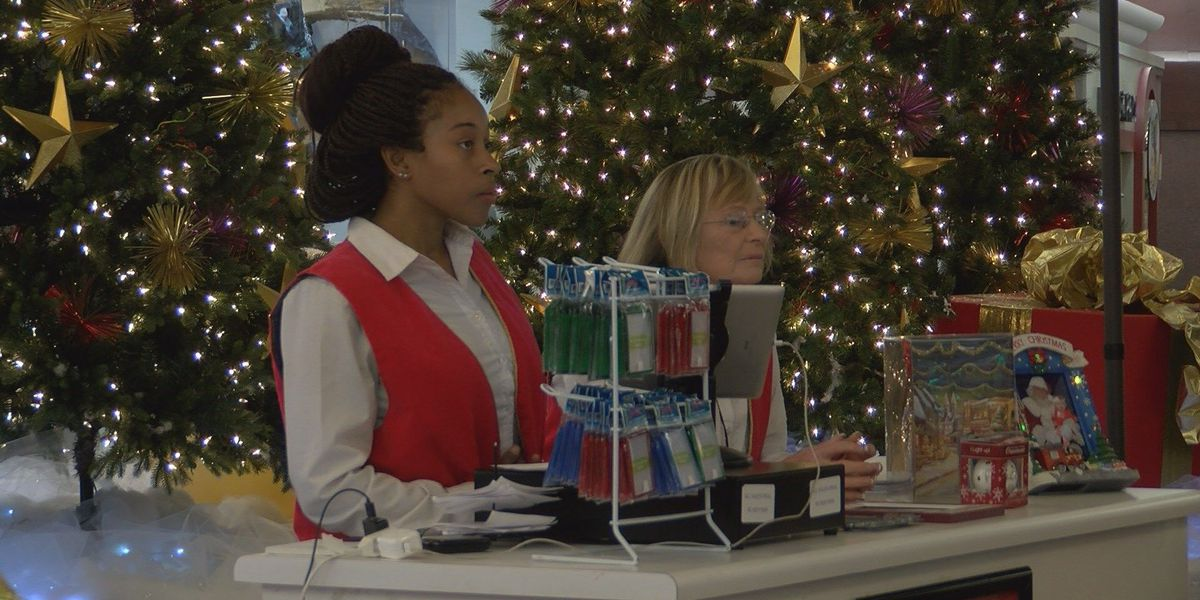Albany Mall hosts Paws-N-Claus pet photos with Santa