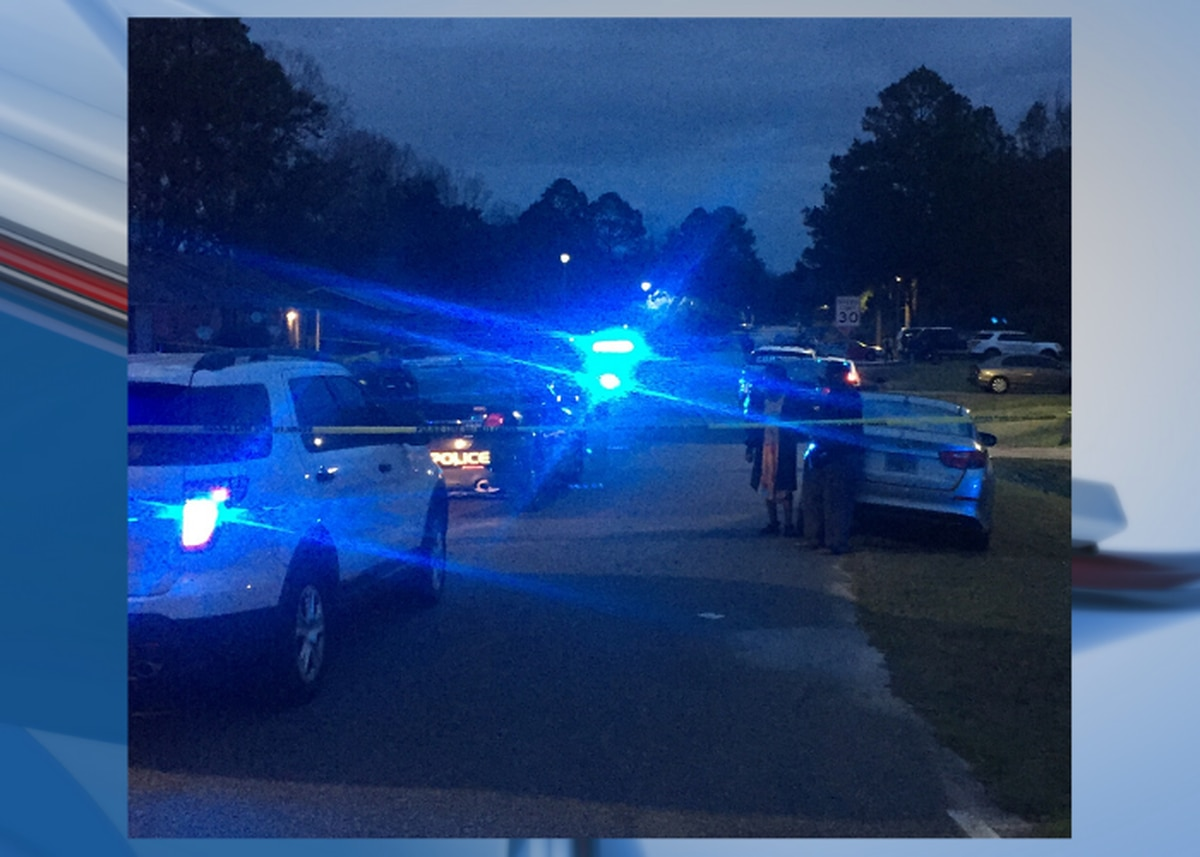 Homicide investigation underway after body found in Albany