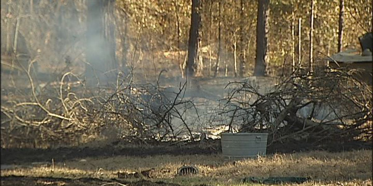 Brush fire damages four backyards
