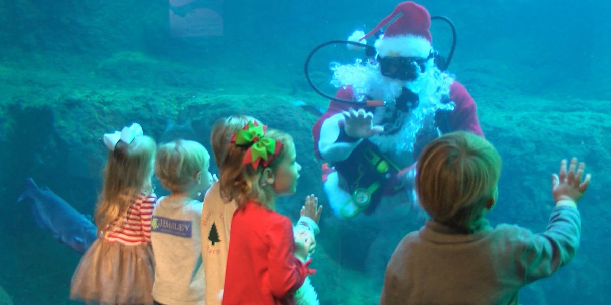 Santa visits the Flint RiverQuarium