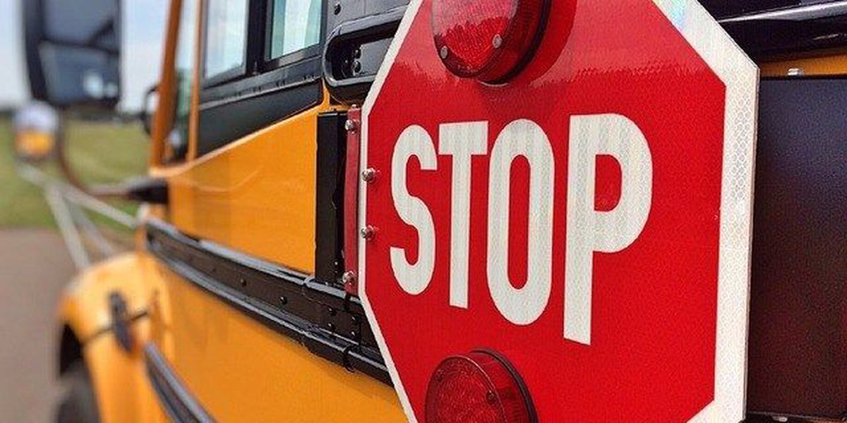 School Zones: Safety and the law