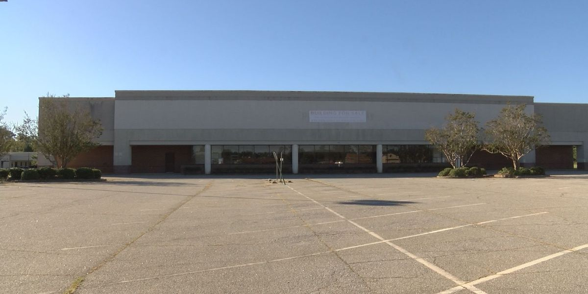 Phoebe purchases vacant former grocery store
