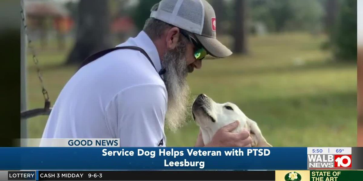 """He's a life saver"" K9 companion helps Leesburg veteran with PTSD"