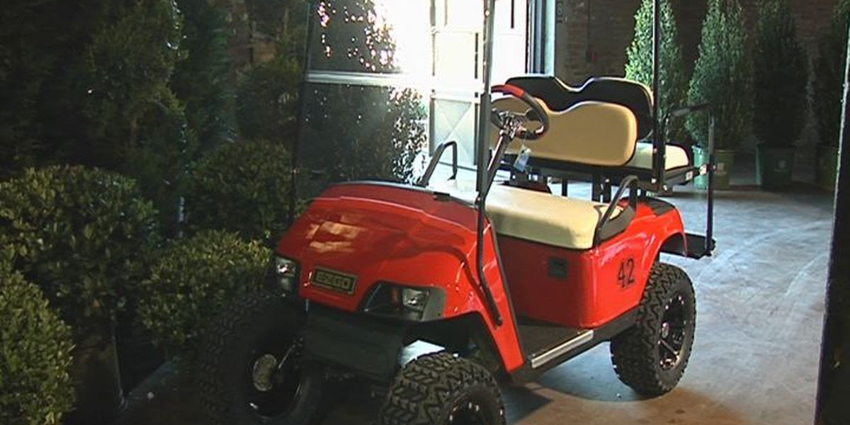 Sylvester publishes golf cart rules