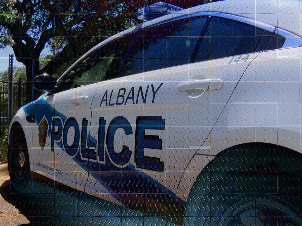 Driver injured after running into Albany Dollar General