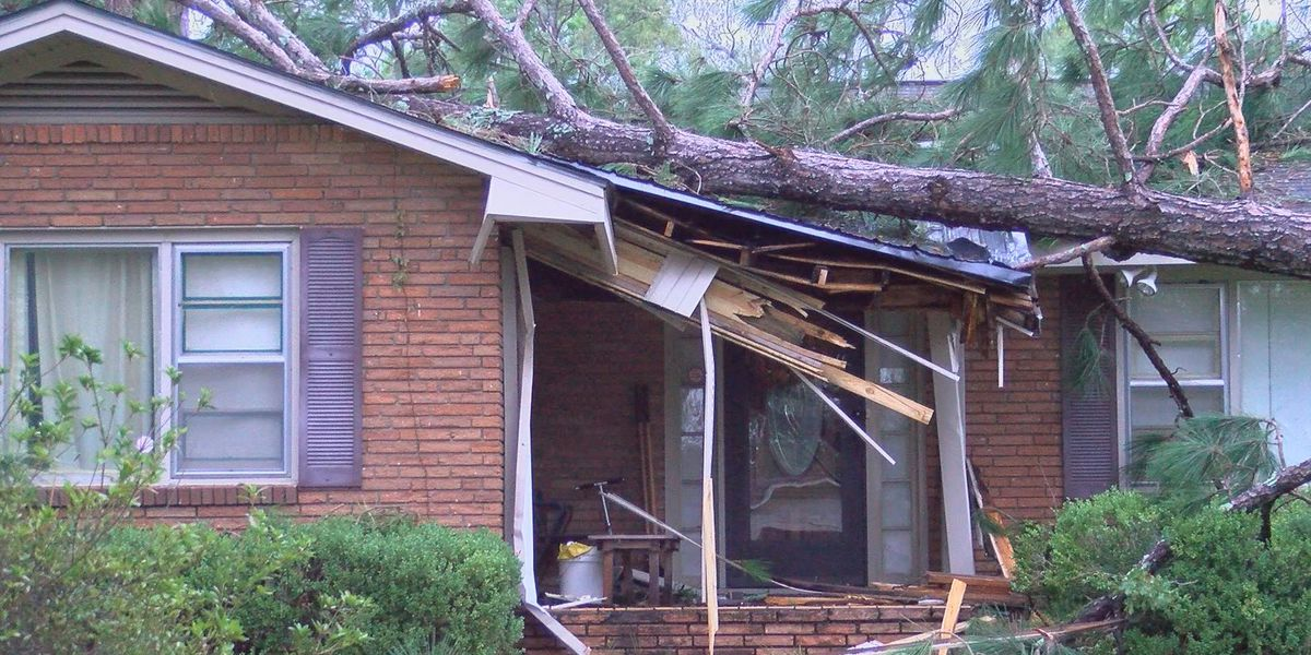 Michael Aftermath: Worst storm damage ever seen for Albany, Dougherty Co.