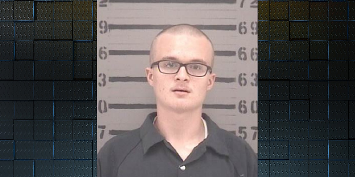 Lee County man pleads guilty to convenience store armed robbery